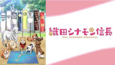 織田シナモン信長のアニメ動画を全話無料視聴できるサイトまとめ